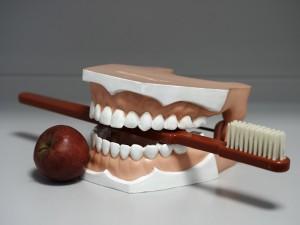 Zahnarztpraxis Dr. med. dent. Peggy Berry